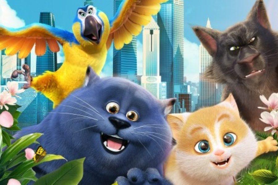 Sekretny świat kotów / 17-20 stycznia 16:00